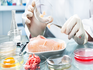 COVID-19 Impact on Food Authenticity Testing in Food and Beverages Market