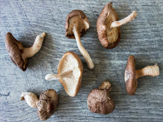 COVID-19 Impact on Global Shiitake Mushroom in the Food and Beverages Industry