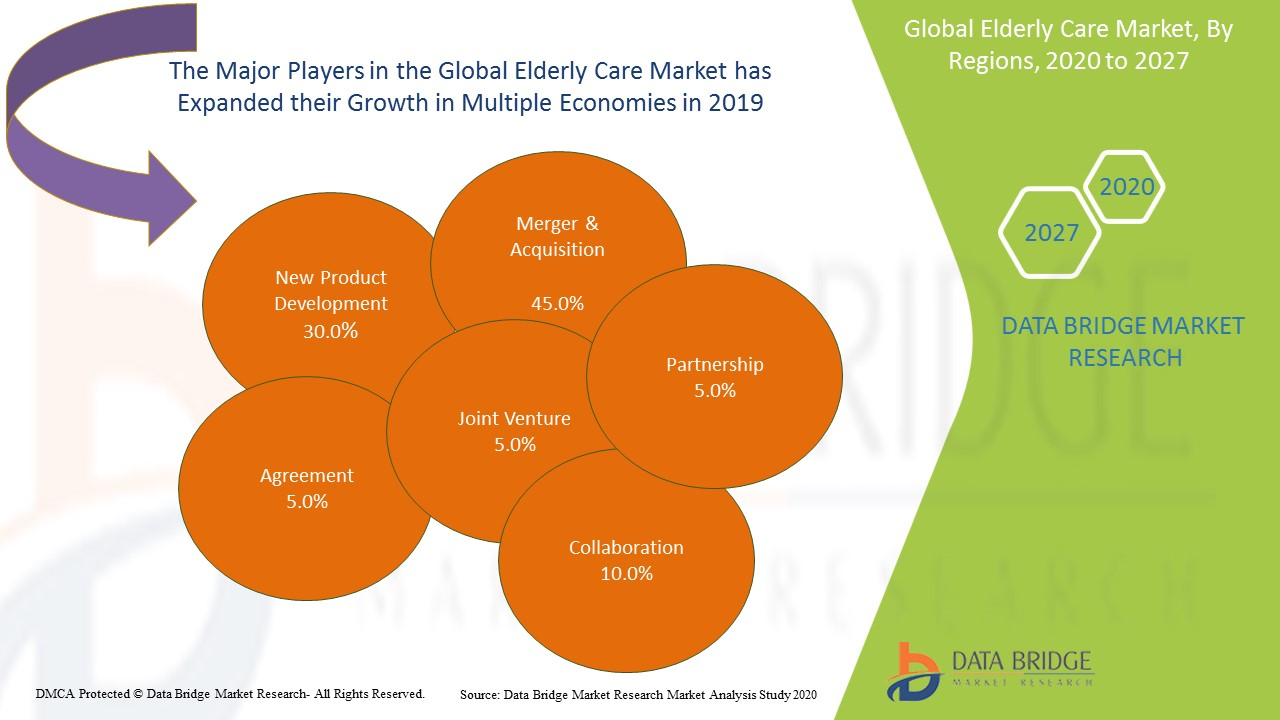 Global Elderly Care Market