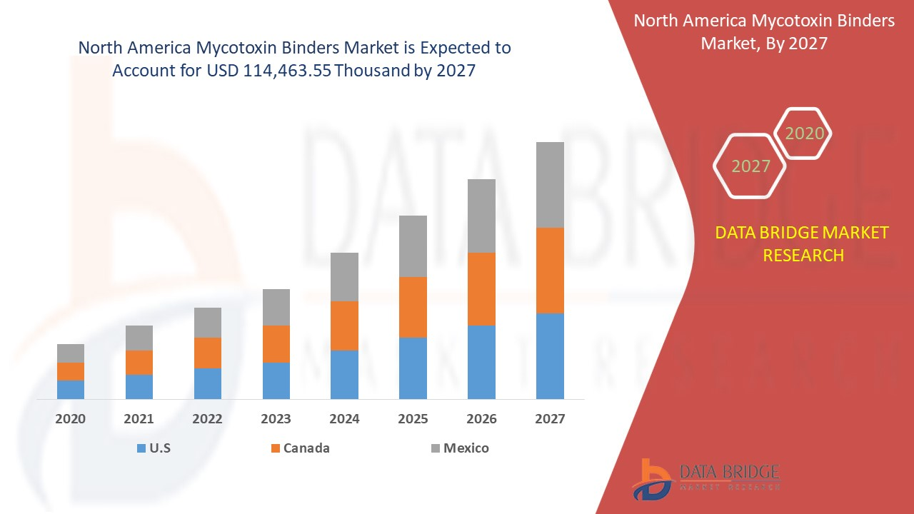 North America Mycotoxin Binders Market