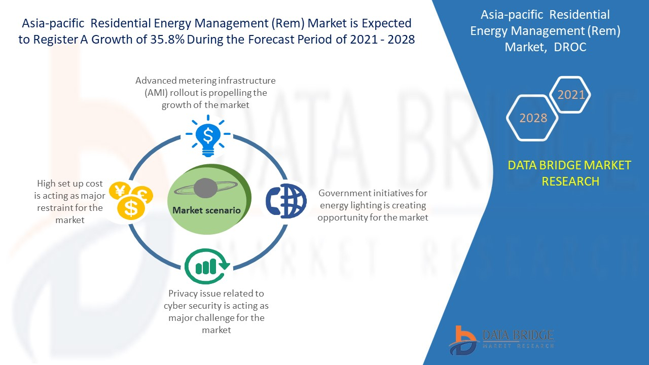 Asia-Pacific Residential Energy Management (REM) Market