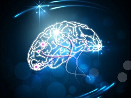 North America Interventional Neurology Devices Market