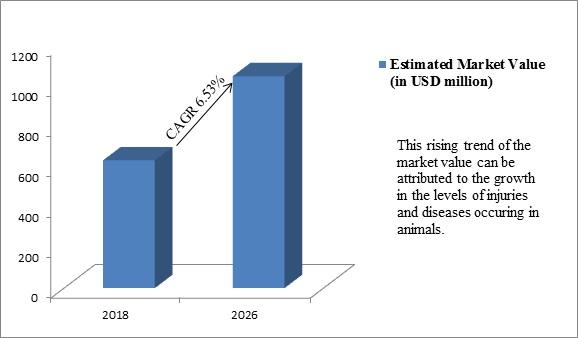 Global Veterinary X-Ray Market