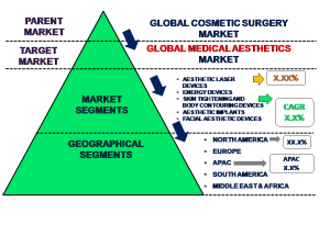 Global Medical Aesthetics Market Market Market Segmentation