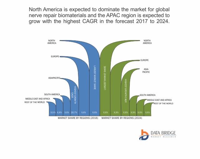 Global Nerve Repair Biomaterials Market