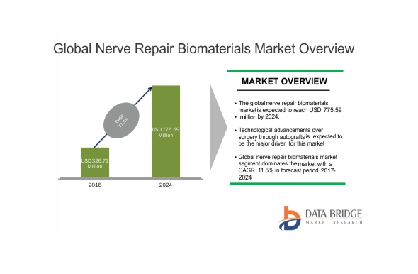 Global Nerve Repair Biomaterials Market