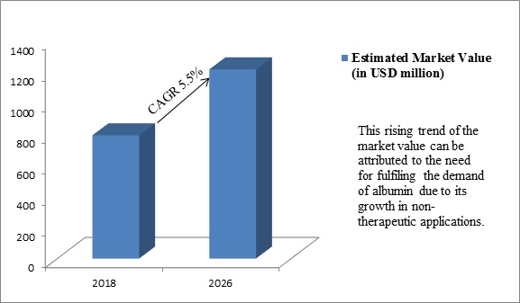 Global Albumin Market