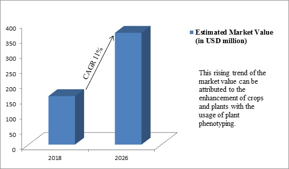 Global Plant Phenotyping Market